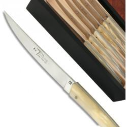 Coffret de 6 couteaux Thiers en plexiglass nacré blanc