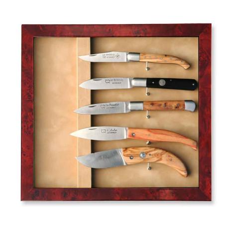 Vitrine Murale pour 5 couteaux - Image 1976
